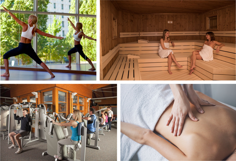 True Positive prediction of the model for Spa & Wellness classes of Yoga, Sauna, Gym, Massage (clockwise) for main image of a hotel